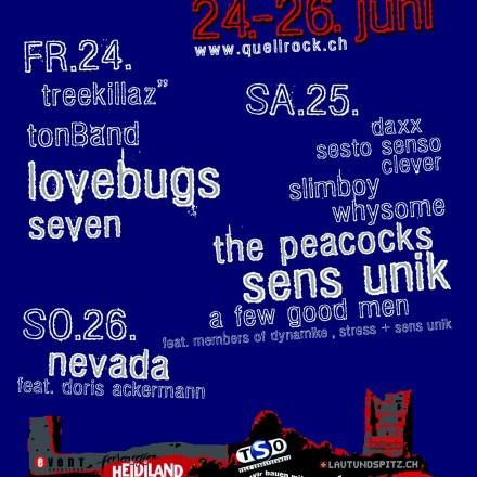 quellrock2005 (15)